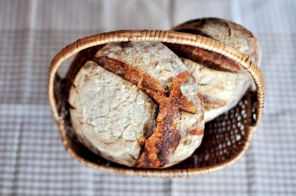 24-h durum sourdough
