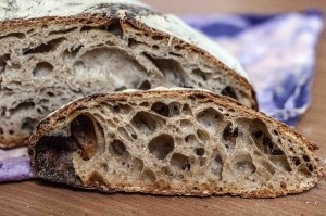 no-knead sourdough with old dough