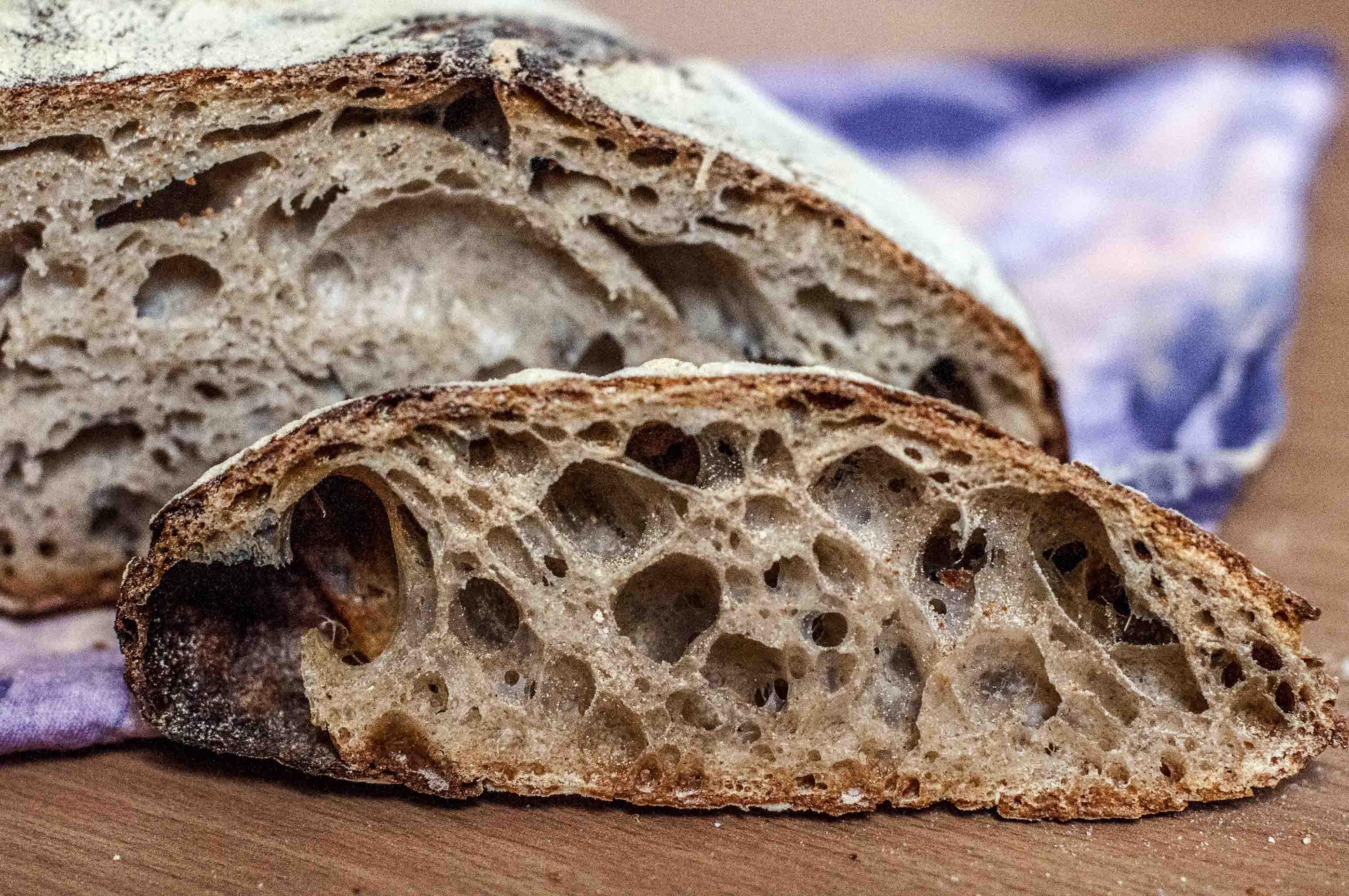 No Knead Sourdough With Old Dough Bread And Companatico