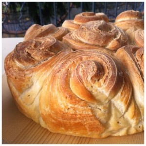 pan de hoialdre ricette del bimby
