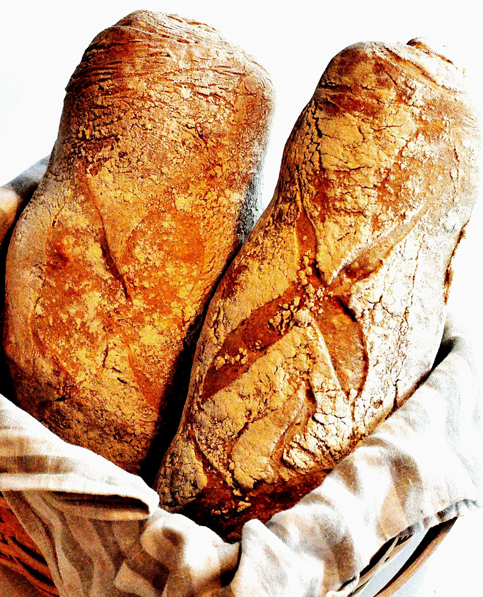Love At First Loaf Rustic Italian Bread With Durum Bread And Companatico